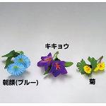 四季の花ごよみ 朝顔 (ブルー) 100入 [W64336]